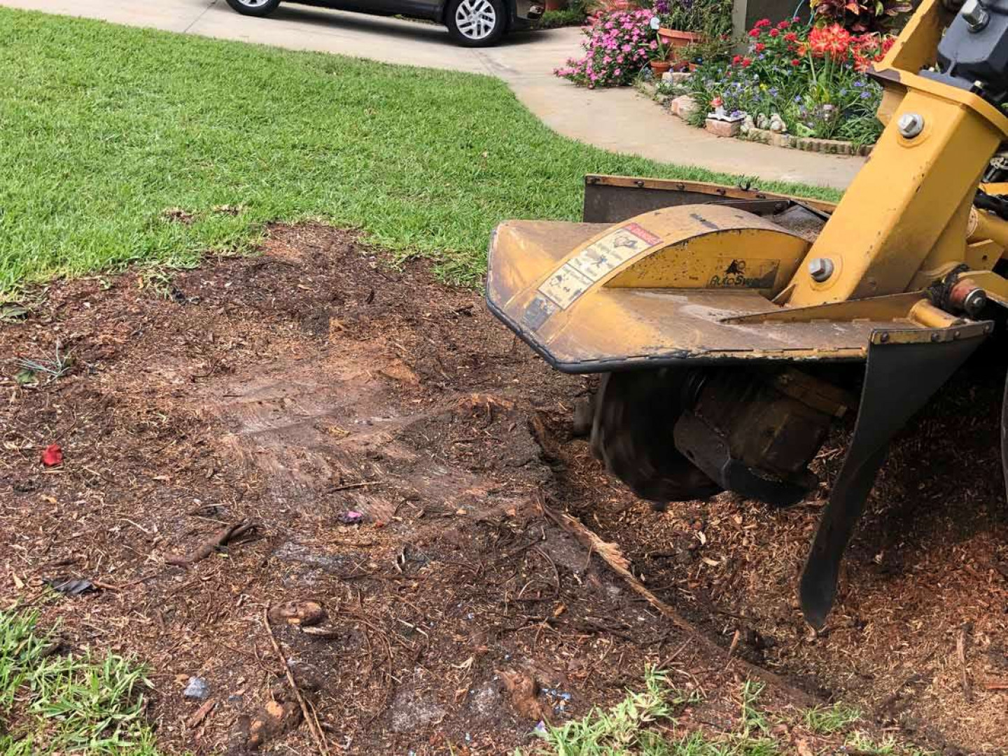 Why should you get rid of that troublesome tree stump?